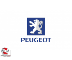 GENUINE PEUGEOT PARTS DEALER  { 07064714665 }